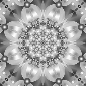 black-and-white-2a.jpg
